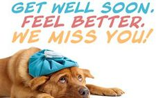 Thoughts and Prayers We Missed You, Get Well Soon, Feel Better, Ecards, Prayers, Greeting Cards, Wellness, Thoughts, Feelings