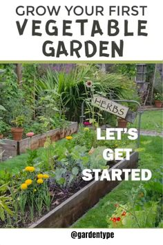 Starting A Vegetable Garden, Vegetable Garden For Beginners, Vegetable Garden Design, Garden Landscape Design, Gardening For Beginners, Garden Landscaping, Gardening Tips, Organic Gardening, Vegetable Gardening