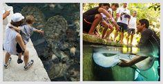 Actividades en Xcaret Cancun