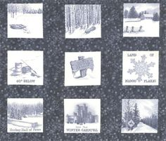 http://www.hingeleyroadquilting.com/images/products/detail/panel.1.jpg