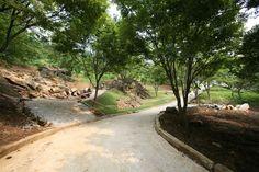 wolmyeongdongの道