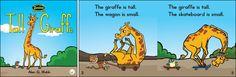Tall Giraffe—by Alex G. Webb Series: Zoozoo Into the Wild GR Level: D Genre: Narrative