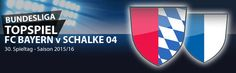 #Bundesliga, 30. Spieltag 2015/16 - Für viele Wettfreunde ist dies ein vermeintlich leichter Spieltag sollte man meinen, da bis auf die Begegnung Augsburg gegen Stuttgart und Darmstadt gegen Ingolstadt sämtliche abstiegsbedrohten Mannschaften gegen Vereine aus der ersten Tabellenhälfte antreten müssen. Das Highlight an diesem Bundesliga Wochenende ist das Spitzenspiel zwischen Bayern München und Schalke 04. Unsere Vorschau und aktuelle Wettquoten auf MeinOnlineWettanbieter.com