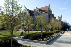 Programs | University Of Chicago Summer Session