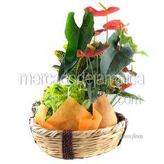 Canasta Flores Mixtas| Envia Flores