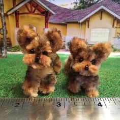 Pipe cleaner puppies Little Yorkies New Crafts, Diy Arts And Crafts, Crafts To Do, Yarn Crafts, Crafts For Kids, Paper Crafts, Pipe Cleaner Projects, Pipe Cleaner Art, Pipe Cleaner Animals