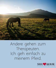 Andere gehen zum Therapeuten. Ich geh einfach zu meinem Pferd.  #Pferd # Reiten