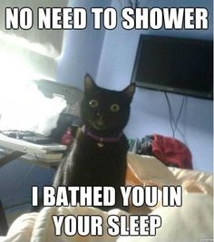 um..yeah i wouldn't doubt if my cats have done this to me at some point lolz