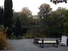 Hamburg Botanical Garden botanischer garten