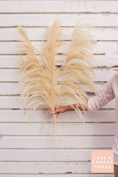 Luxe B Pampas Grass is currently the leading online marketplace for Pampas Grass.We carry a large variety of Pampas types in natural colour, bleach white, pink and other mesmerizing colors. Perfect for your home decor, any event especially boho wedding decor. Currently we ship anywhere in the US and Canada. @luxebpampasgrasswww.luxebpampasgrass.com#pampasgrass #driedpampas #luxebpampasgrass #driedpampasgrass #driedflowers #bohowedding Boho Wedding Decorations, Pampas Grass, Dried Flowers, This Is Us, Herbs, Online Marketplace, Bleach, Nature, Canada