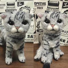 △▲OYABAKA▲△ . ☺︎うちの子人形☺︎ .  インスタ外からのオーダーのスコティッシュフォールドちゃん😽❤️ .  #猫 #ねこ #にゃんこ #cat #catstagram #instacat #petstagram #ilovemycat #愛猫 #スコティッシュフォールド #ねこ部 #ねこら部 #ふわもこ部 #にゃんすたぐらむ #羊毛 #羊毛フェルト #ハンドメイド #handmade #うちの子人形