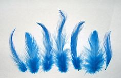 """Pretty turquoise blue rooster hackle feathers 2-6"""" length. Great for fly tying, regalia and crafting 7 gram bag approx 150 ct Just 2.49 Shipping discounts given on multiple bag purchases. More colors in our ebay store! #hacklefeathers #turquoiseblue"""