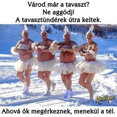 More Russian winter: Dance of little swans Funny Quotes, Funny Memes, Hilarious, Jokes, Russian Winter, Picture Day, Winter Wonderland, I Laughed, Laugh Out Loud