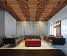Wood Ceilings | Wood Ceiling Planks & Panels | Armstrong Commercial Ceilings
