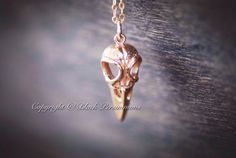 NEW  Aves Necklace  Natural Bronze Bird Skull by blackpersimmons, $24.00