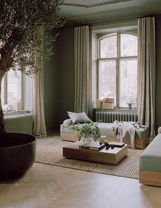 Sage Green Walls, Green Sofa, Amazing Spaces, Nordic Design, Minimalist Living, New Words, Living Room Green, Beautiful Space, Light Colors