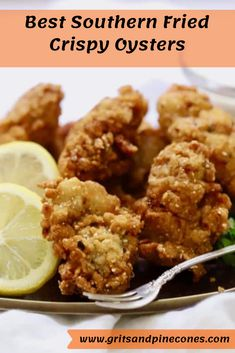 crunchy, fried oysters are a guilty pleasure of mine which I splurge on only occasionally, usually when we go out to eat. But when I do, I always enjoy these briny bivalves, which taste like the sea. Fish Recipes, Seafood Recipes, Great Recipes, Dinner Recipes, Cooking Recipes, Favorite Recipes, Seafood Appetizers, Skirt Steak, Comfort Food