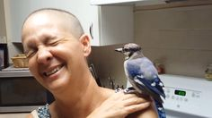 This Story!> Dina Theissen, found tiny Gracie when he was only a few hours old and spent days nursing the chick back to health - and then was 'repaid with its love' when she got ill Beat Cancer, Breast Cancer Awareness, Nursing, Real Life, Bird, Pets, Health, Health Care, Birds