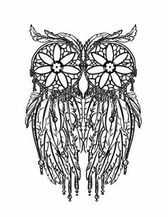 Coloring Owls On Pinterest Owl Pages And
