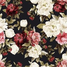 Riyidecor Watercolor Floral Shower Curtain Rustic Flowers Rose Girl Retro Leaves Blossom Peony Woman Waterproof Fabric Bathroom Home Decor Set 12 Pack Plastic Hooks Inch Wallpaper Roll, Peel And Stick Wallpaper, Iphone Wallpaper, Washable Wallpaper, Flower Wallpaper, Wallpaper Ideas, Flores Vintage Png, Cortina Floral, Floral Shower Curtains