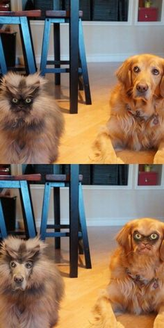 Most disturbing face swap ever.