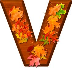Presentation Alphabets: Cherry Wood Leaves Letter V