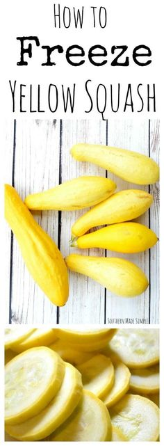 to Freeze Yellow Squash Do you have an abundance of yellow summer squash this summer? Don't throw it out! Use this simple step by step guide to freeze your squash and enjoy it all year long!Simple English Simple English may refer to: Freezing Vegetables, Fresh Vegetables, Fruits And Veggies, Freezing Fruit, Freezing Onions, Freezing Yellow Squash, Yellow Summer Squash, Canning Yellow Squash, Canning Squash
