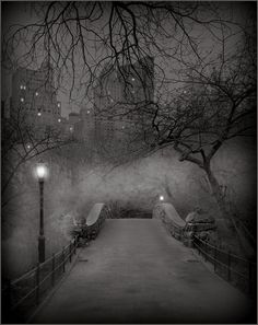 Because nothing beats a snowy stroll through Central Park. some day i will do this