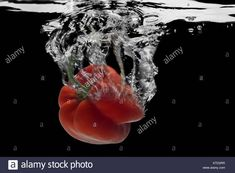 Download this stock image: Red pepper,  water splash. - KTD2RR from Alamy's library of millions of high resolution stock photos, illustrations and vectors.