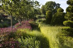 Hampshire garden | Tom Stuart-Smith. Lovely idea for designing a woods edge garden.