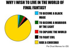 Yup! I want to ride a freakin awesome Chocobo!