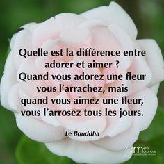 Différence entre adorer et aimer. #08h08 #JeSuisPrésentAMaVie #Adorer #Aimer #Bouddha Entrepreneur Quotes, Business Entrepreneur, Strange Addictions, Business Money, Self Development, Holy Spirit, Namaste, Love Story, Zen