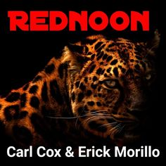 "This track is a crossmix of the legendary Carl Cox track ""Jaguar"" and the track of Erick Morillo ""Something for Carl Cox"". The track Jaguar is a remix variant of Flavio Diaz, which was again mixed by Snow Leopard Wallpaper, Cat Wallpaper, Big Cats, Cats And Kittens, Leopard Pictures, Clouded Leopard, Jaguar, Animals Beautiful, Panther"