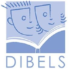 DIBELS is a standardized, formal assessment to test fluency. This assessment provides an efficient means for measuring fluency and early reading skills. DIBELS is a benchmark assessment that monitors student progress and provides teachers with an indicator of where students are with respect to reading fluency. This is an effective tool because it helps teachers set individual goals and plan literacy instruction and interventions.