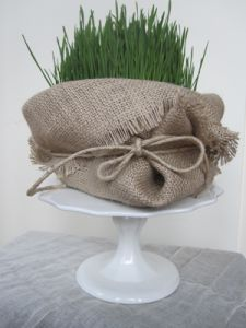 Wheat Grass wrapped in Burlap-or paper bag Growing Wheat, Centerpieces, Centerpiece Ideas, Wheat Grass, Event Planning, Cool Kids, Greenery, Burlap, Flower Bouquets