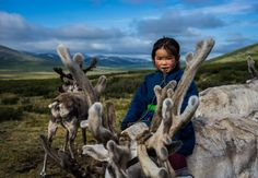 Take a magical photo journey to the far north of Mongolia, where a mystical tribe of 500 Tsaatan people live in the taiga with their herd of reindeer.