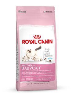 MOTHER & BABYCAT - Speziell für #trächtige und #säugende #Mutterkatzen und #Katzenwelpen. Zwischen der 4. und 12. Lebenswoche sinkt die von der #Mutter übertragene #Immunität allmählich. MOTHER & BABYCAT kann mit einem #Antioxidanzienkomplex und Präbiotika den Katzenwelpen (1 bis 4 Monate) beim Aufbau seiner #natürlichen #Abwehrkräfte unterstützen. http://www.royal-canin.de/katze/produkte/im-fachhandel/nahrung-nach-mass/aufzucht/mother-babycat/eigenschaften/