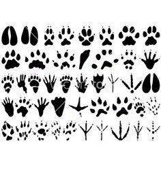Animal track print silhouettes vector on VectorStock&reg
