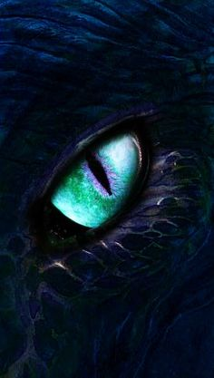 Eye drawing dragon New ideas Fantasy Kunst, Fantasy Art, Fantasy Wolf, Animal Drawings, Cool Drawings, Eye Drawings, Regard Animal, Mythical Creatures Art, Dragon Artwork