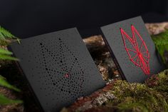 Limited Edition Wolf Gates Music Album