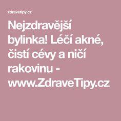 Nejzdravější bylinka! Léčí akné, čistí cévy a ničí rakovinu - www.ZdraveTipy.cz