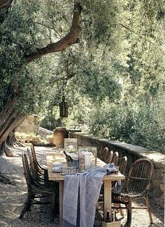 I'm a sucker for Olive trees.  This is J. Saladino's garden in Montecito, CA.