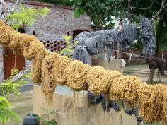 Wool used in making the rugs   #Persianrug #PersianCarpet #persianrugsinfo #ruglovers