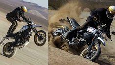 2017 Ducati Scrambler Desert Sled - White Ducati Motorcycles, Ducati Scrambler, Ducati Monster 1100 Evo, Ducati Diavel Carbon, Desert Sled, Deserts, Bike, Bicycle, Postres