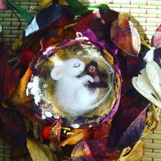 "«Мышка-брошка) @pykodelie #pykodelie""  Специально для @Goldpens#Goldpens  БРОШЬ мышонок ""Monya""Моня)) ПРОДАН  ВОЗМОЖЕН НА ЗАКАЗ  #woolmouse…»"
