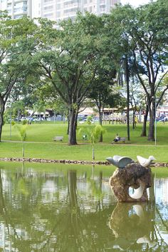 Parque Flamboyant, Goiânia - Goiás