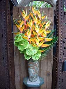 Gorgeous Heliconia and green anthurium...