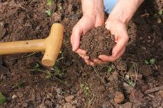 Simple Composting How-To | Stretcher.com - Simple suggestions on how to get started composting