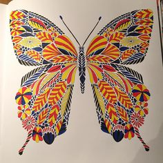 Butterfly. #butterfly #colouring#colour #shadyas #milliemarotta #tropicalparadise