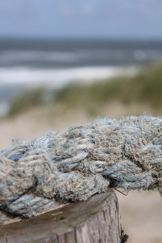 old beach rope